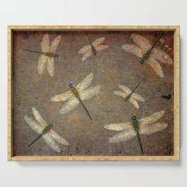 Swarm of Dragonfly on Stone  Serving Tray