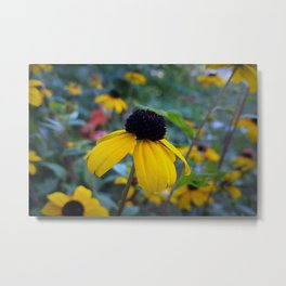 Little yellow flower Metal Print