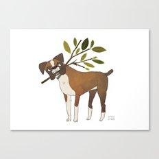 Boxer Canvas Print