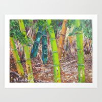 Bamboo in Florida by Pallet Knife Art Print