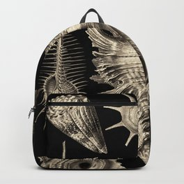 Ernst Haeckel Prosobranchia Sea Shells Backpack