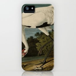 226 Hooping Crane17 iPhone Case