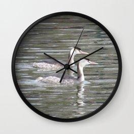 Double Grebe Wall Clock