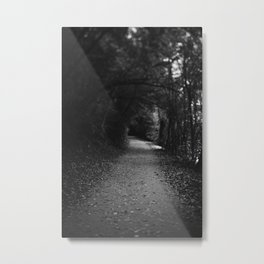 Less Traveled By Metal Print
