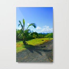 Reunion Island, Indian Ocean (2) Metal Print