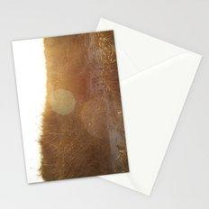 Montauk Sand Dune Sunflare Stationery Cards