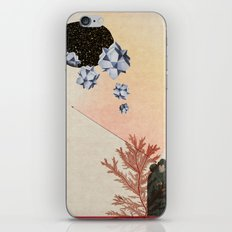 Kings and Queens iPhone & iPod Skin