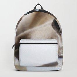 Beautiful Dreamer Backpack