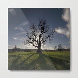 Holy Tree Metal Print