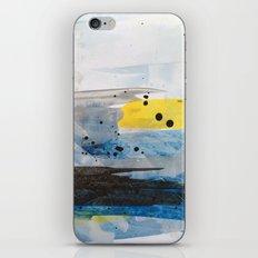 Dusty Sea iPhone & iPod Skin