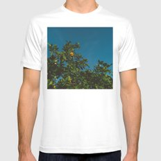 California Orange Tree III Mens Fitted Tee MEDIUM White