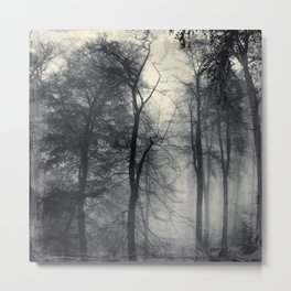 realm of shades - misty forest Metal Print
