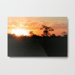 Sunset Tropical Forest Trees Landscape 2, Pantanal, Brazil Metal Print