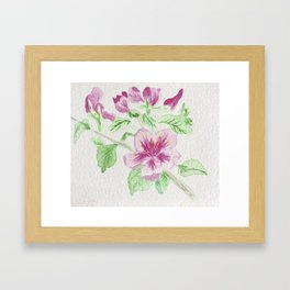 Flower on a Vine Framed Art Print