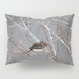 Mourning Dove Asleep in Snowfall Pillow Sham