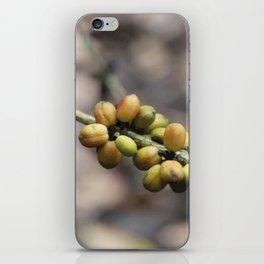 Illustration Coffee Beans iPhone Skin