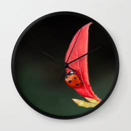 Ladybug On An Autumn Leaf Wall Clock