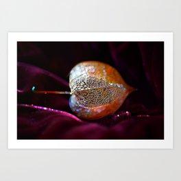 Sparkling Physalis  Art Print
