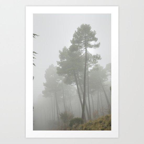 """Crossing trees"" Art Print"