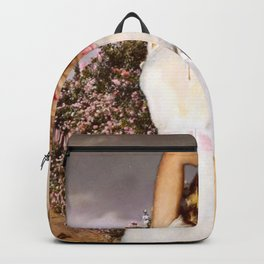 Soft Decay Backpack