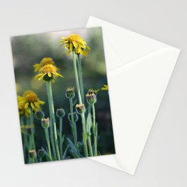 Alpine Wildflowers Stationery Cards