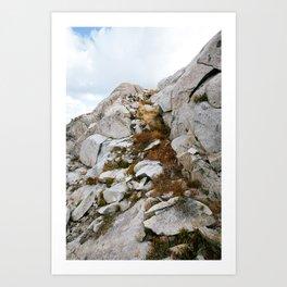 Desolation Mountainside Art Print