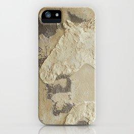 Horse in Stone iPhone Case