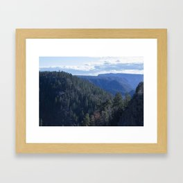 The Sea of trees Framed Art Print