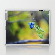 autumn fruit. Laptop & iPad Skin