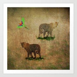 Parrot Flight Through Leopards Art Print