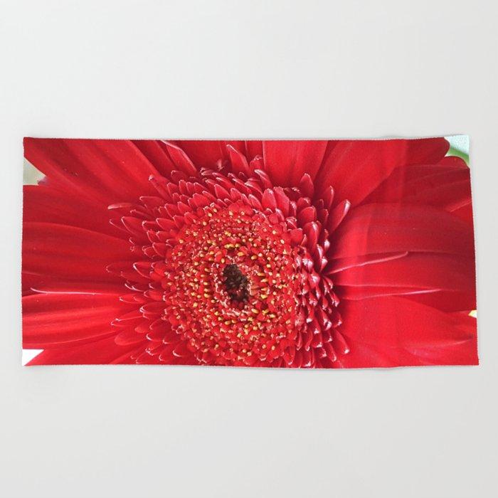 Red Dahlia Beach Towel