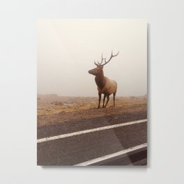 From the mist Metal Print