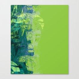 112117 Canvas Print