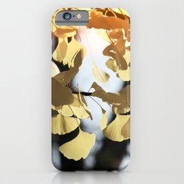 Whisper in the Ginkgo Tree iPhone Case
