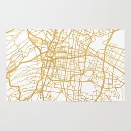 MEXICO CITY MEXICO CITY STREET MAP ART Rug