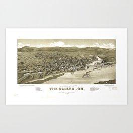 Aerial View of Dalles, Oregon (1884) Art Print