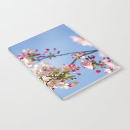 Crabapple blossoms Notebook
