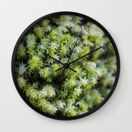 Winter Moss Wall Clock
