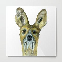 Deer (Musk Deer) Metal Print