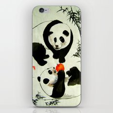 my apple iPhone & iPod Skin