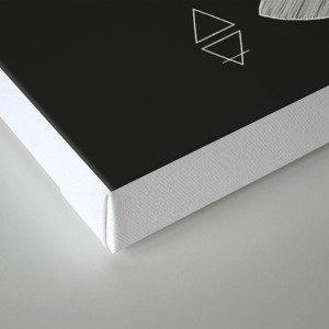 Metaphys Moth - Black Canvas Print