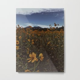Wildflowers Forever Metal Print
