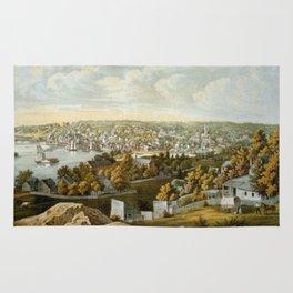 Vintage Pictorial Map of Georgetown (1855) Rug