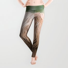 Portrait of a cute Scottish Highland Cattle Leggings