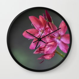 Bush Lily, No. 2 Wall Clock