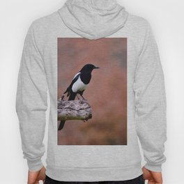 Magpie perched Hoody
