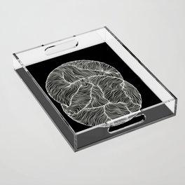 Inverted Infinity Acrylic Tray