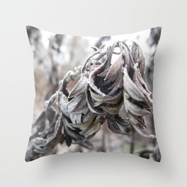 Buongiorno gelo Throw Pillow