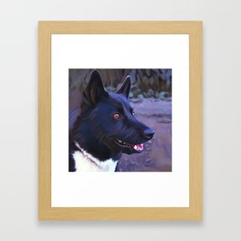 Karelian Bear Dog Framed Art Print