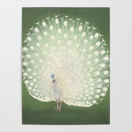 Peacock, Ohara Koson - Japanese Woodcut Poster